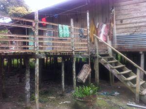 Borneo Aktual-003-1024x765