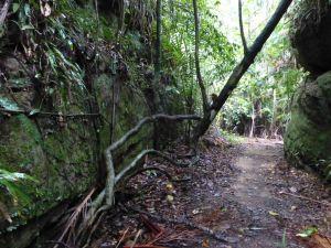 Borneo Aktual-032-1024x768