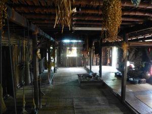 Borneo Aktual-036-1024x768
