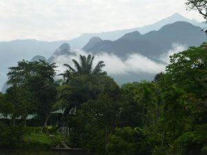 Borneo Aktual-096-1024x768