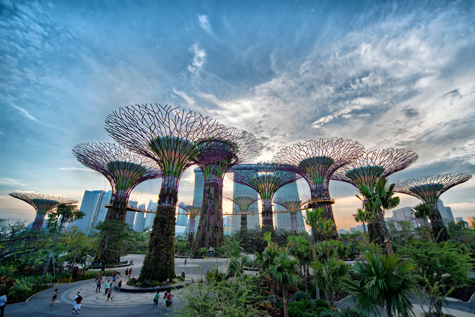 gardens by the bay i restauracja supetree 1