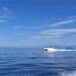 jacht brazylia