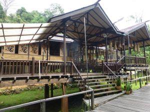 Borneo Aktual-038-1024x768