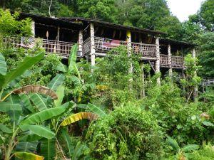 Borneo Aktual-043-1024x768