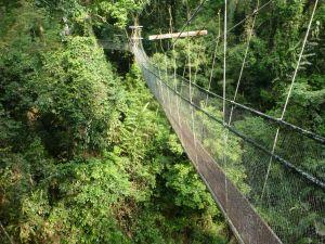 Borneo Aktual-103-1024x768