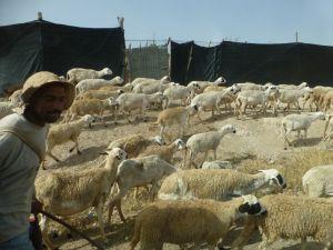 Maroko-03-1024x768